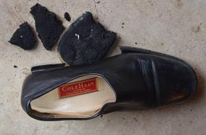 Shoe Falling Apart