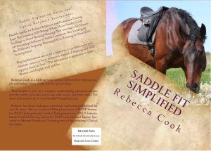 Saddle Fit Book Cover