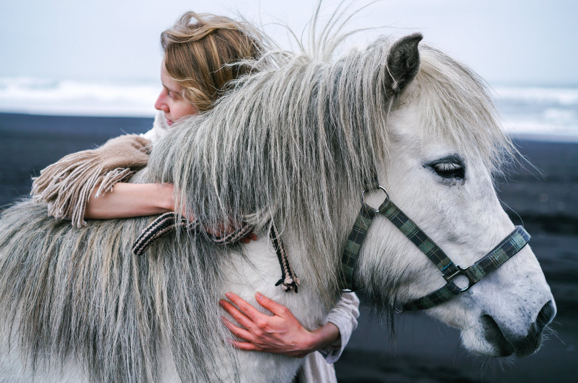 woman embracing gently gray horse on beach